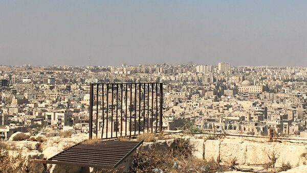 Syria. Terrorist-controlled eastern Aleppo districts as seen from the city's Citadel. - Sputnik International