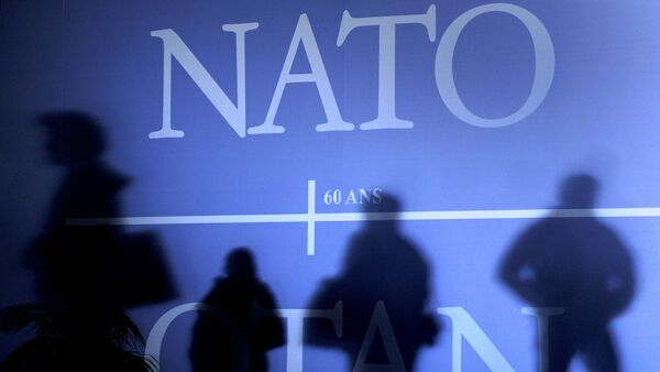 Shadows cast on a wall decorated with the NATO logo and flags of NATO countries - Sputnik International