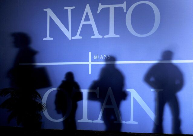 This 2 April 2009 file photo shows shadows cast on a wall decorated with the NATO logo and the flags of NATO countries in Strasbourg, eastern France, before the start of the NATO summit which marked the organisation's 60th anniversary.