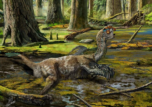 An artistic reconstruction, showing the last-ditch struggle of Tongtianlong limosus as it was mired in mud, one possible, but highly speculative, interpretation for how the specimen was killed and buried.