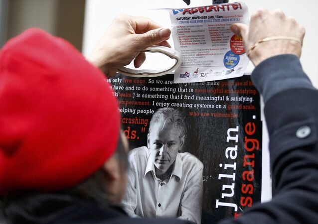 A supporter of Julian Assange holds a poster after prosecutor Ingrid Isgren from Sweden arrived at Ecuador's embassy to interview him in London, Britain, November 14, 2016.