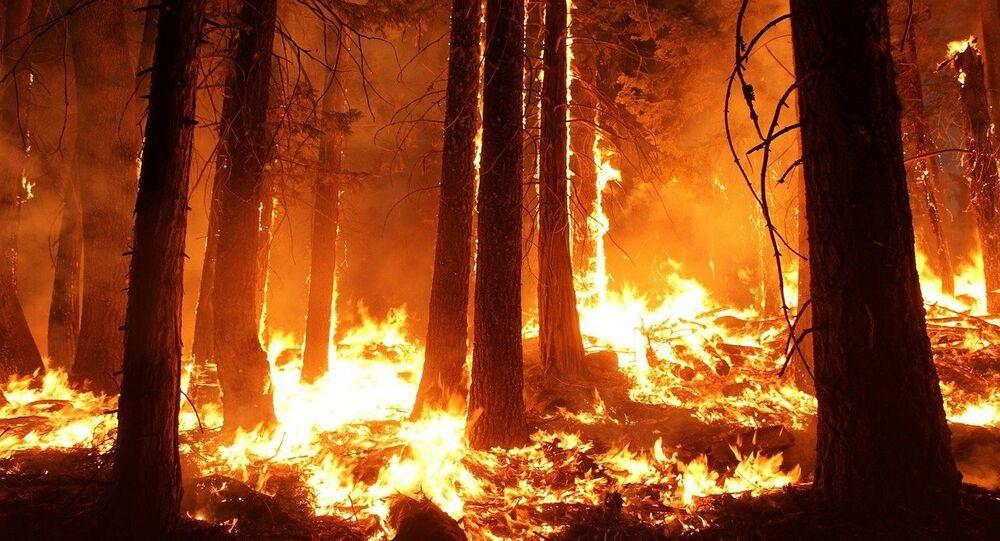Fire. (File)