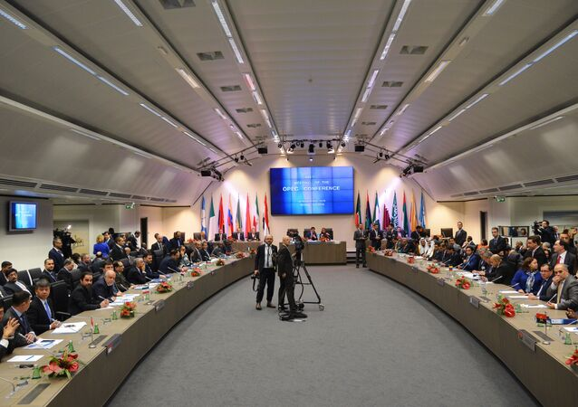 A meeting of the Organization of the Petroleum Exporting Countries (OPEC) in Vienna. File photo