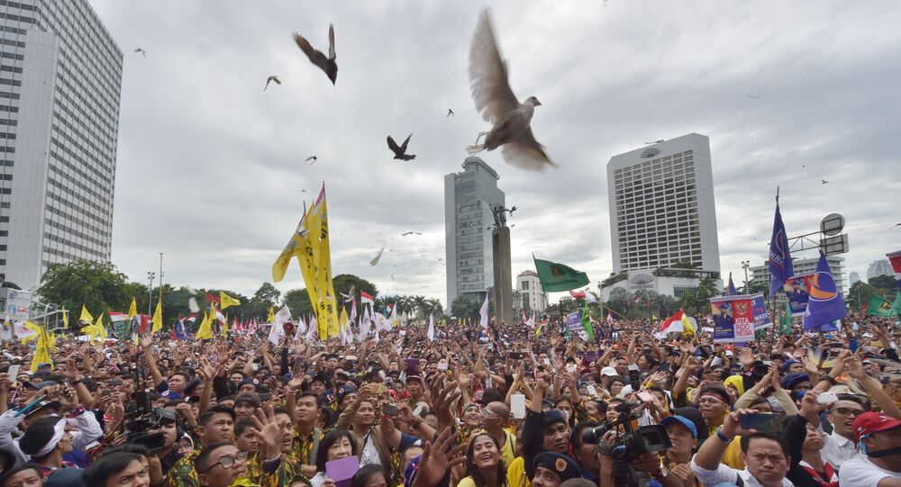 Pigeons fly over Indonesian people as they attend a pro-government rally to call for unity in Jakarta on December 4, 2016