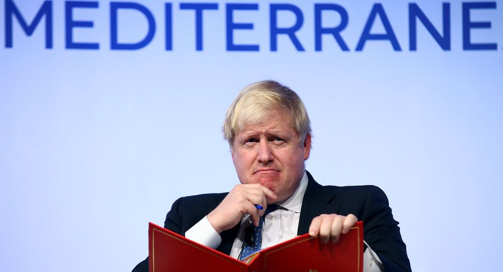 Britain's Foreign Secretary Boris Johnson gestures as he speaks during the MED Mediterranean Dialogues forum in Rome, Italy December 1, 2016.