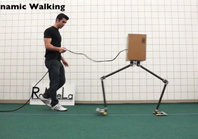 NABiRoS: A New Approach to Walking