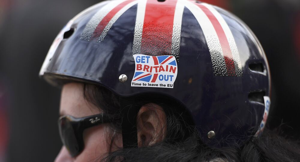 A cyclist wears a pro-Brexit badge on her Union flag themed helmet outside the Supreme Court on the first day of the challenge against a court ruling that Theresa May's government requires parliamentary approval to start the process of leaving the European Union, in Parliament Square, central London, Britain December 5, 2016.