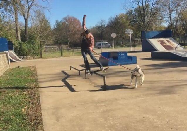 Dog Runs with Skateboarder
