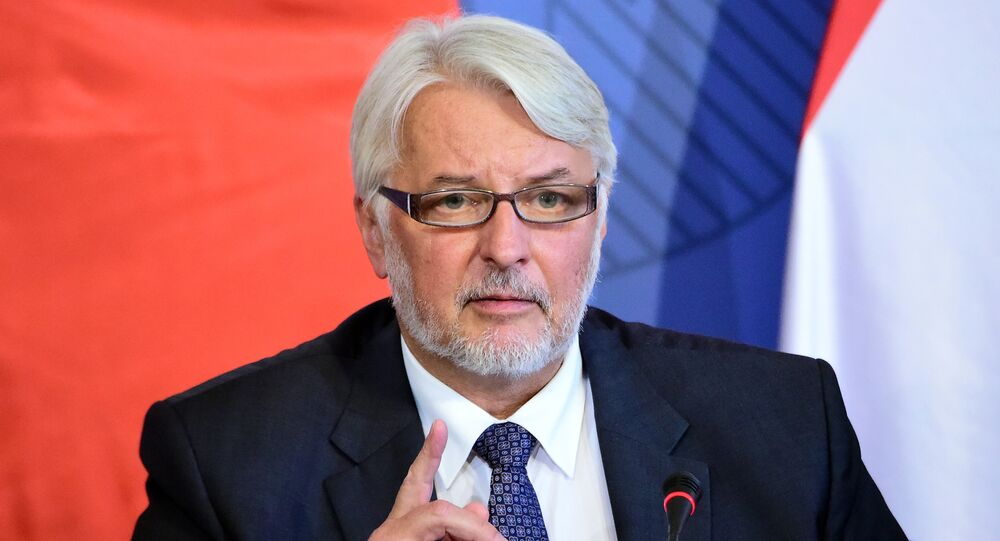 Polish Minister of Foreign Affairs Witold Waszczykowski