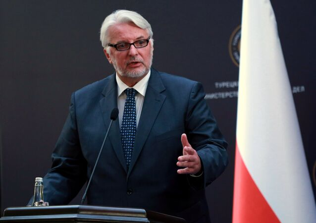 Polish Foreign Minister Witold Waszczykowski holds a joint press conference after a tripartite meeting at the Ankara Palace on August 25, 2016