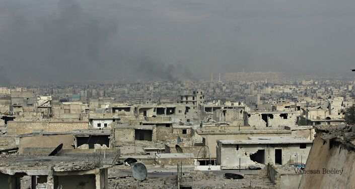 View from rooftops of Sheikh Saeed area of East Aleppo, decimated by street fighting, artillery fire, mortars, shells.