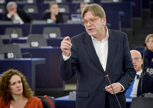 VERHOFSTADT, Guy (ALDE, BE). Plenary session week 50 2016 in Strasbourg - Preparation of the European Council meeting of 15 December 2016.