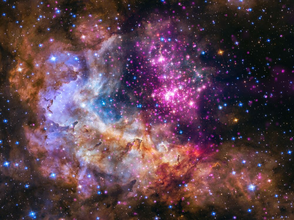 A cluster of young stars