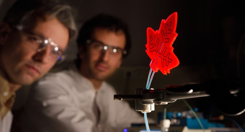 Artificial leaf developed by researchers at Eindhoven University of Technology, Netherlands