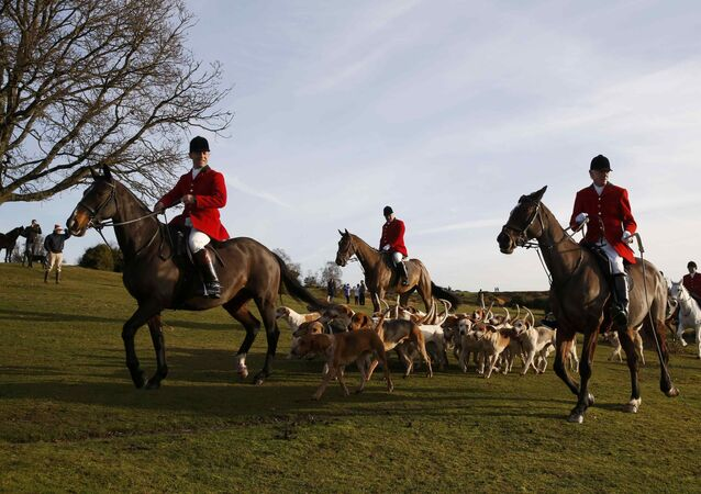 Members of the New Forest Hunt arrive at Boltons Bench for the annual Boxing Day hunt in Lyndhurst, southern England December 26, 2016