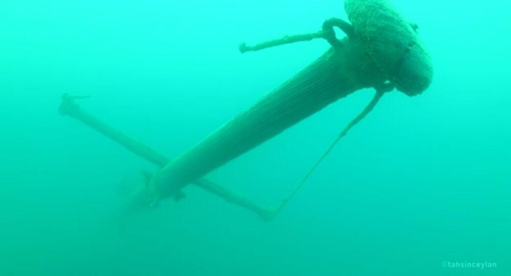 Shipwreck discovered in Lake Van
