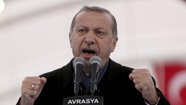 President Recep Tayyip Erdogan (File) - Sputnik International