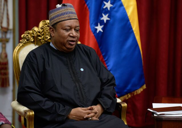 Organization of the Petroleum Exporting Countries (OPEC) Secretary General Mohammed Barkindo (File)