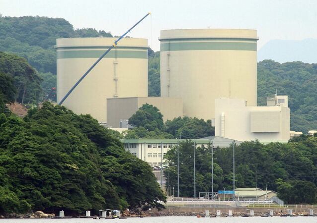 Kansai Electric's No. 1 and No. 2 reactors at the Takahama nuclear plant are seen in this picture at the town of Takahama in Fukui prefecture, some 350 kilometres (215 miles) west of Tokyo on June 20, 2016