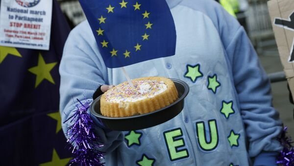 A pro-Europe supporter holds a cake with a EU flag in it, following the decision of the Supreme Court that Theresa May's government requires parliamentary approval to start the process of leaving the European Union, in Parliament Square, central London, Britain, January 24, 2017. - Sputnik International