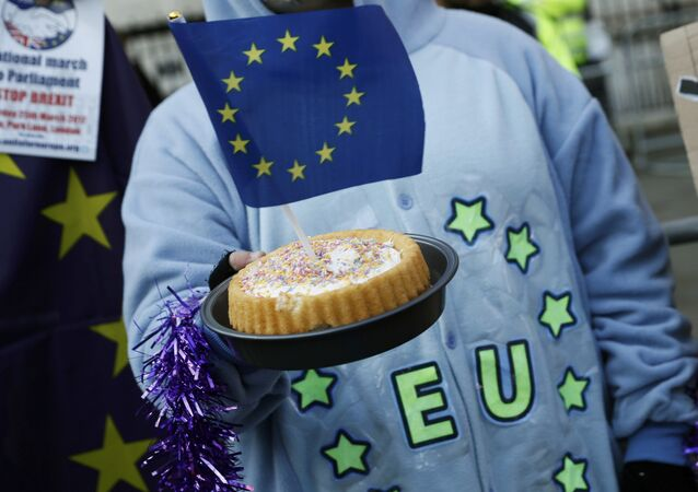 A pro-Europe supporter holds a cake with a EU flag in it, following the decision of the Supreme Court that Theresa May's government requires parliamentary approval to start the process of leaving the European Union, in Parliament Square, central London, Britain, January 24, 2017.