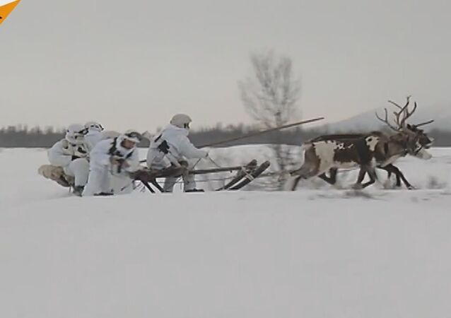 Russian Northern Fleet Marines Learn To Fight In The Tundra