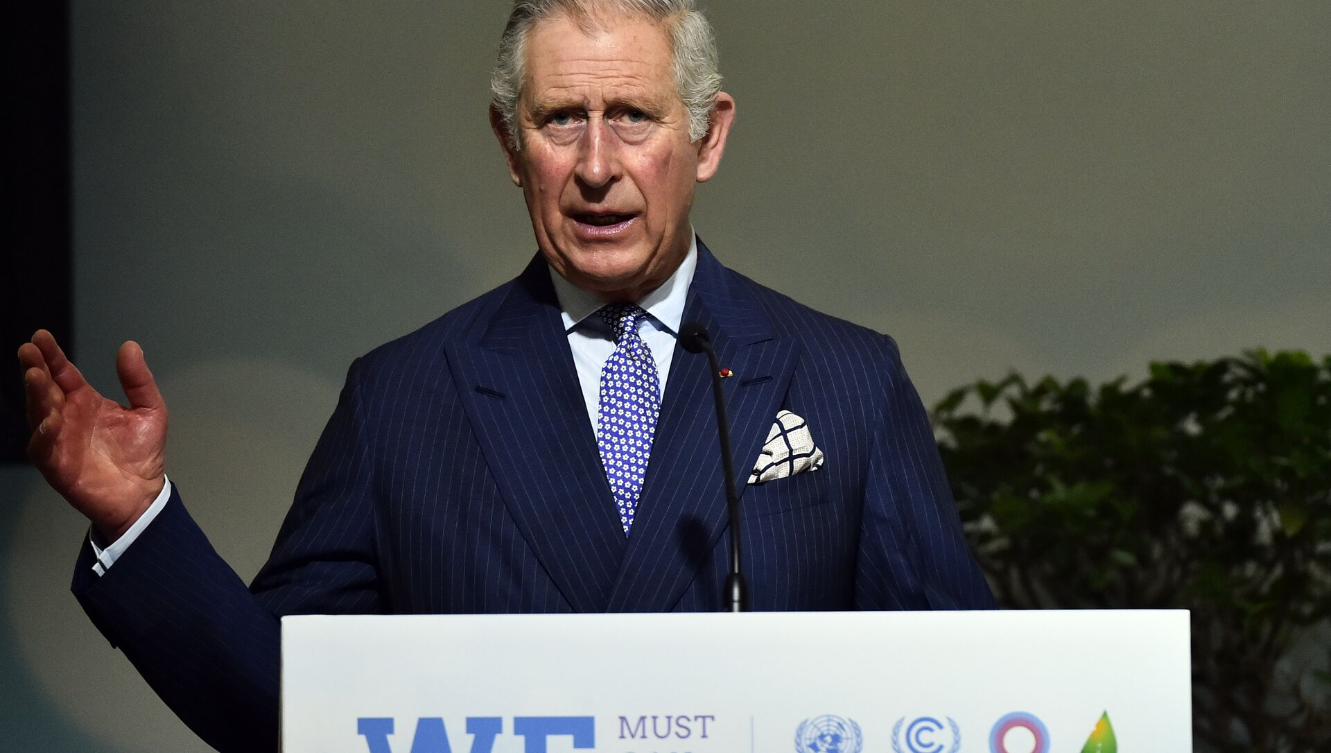 Britain's Prince Charles, The Prince of Wales delivers a speech on Forests as part of the United Nations conference on climate change COP21, on December 1, 2015 at Le Bourget, on the outskirts of the French capital Paris - Sputnik International, 1920, 01.08.2021
