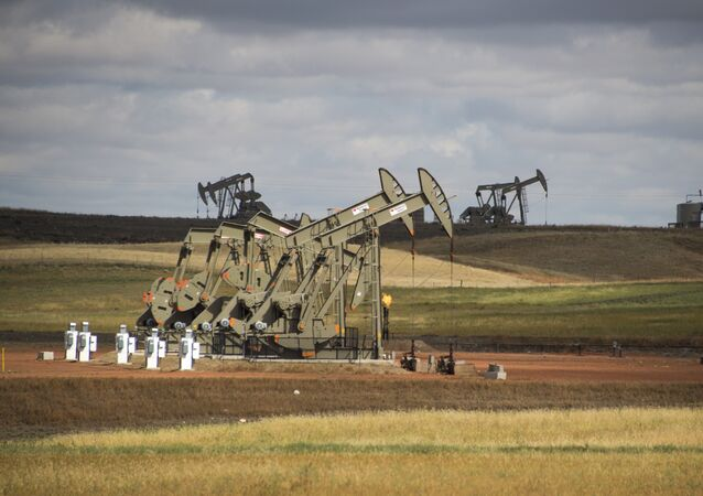 Pump jacks are seen on the Bakken Shale Formation, near Williston, North Dakota, on September 6, 2016