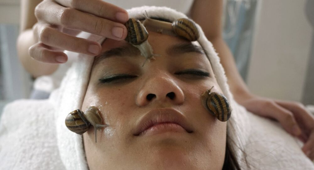 A customer receives a beauty treatment with snails at a snail farm in Chiang Mai province, northern of Thailand.