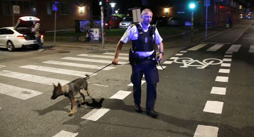Danish police officer and a police dog (File)