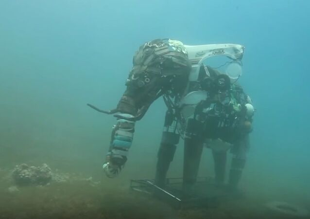 Egypt's Underwater Sculptures Becoming Living Coral Reef
