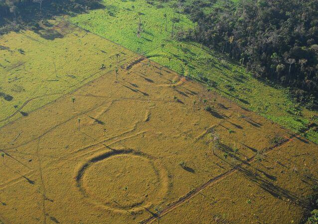 450 'henge' earthworks resembling Stonehenge found in Amazon rainforest using drones.