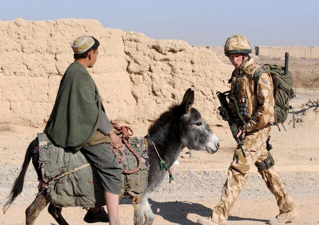 A photograph made available February 28, 2008, shows Britain's Prince Harry (R) as he passes a donkey while on patrol through the deserted town of Garmisir close to FOB Delhi (forward operating base), in Helmand province in Southern Afghanistan, on January 02, 2008