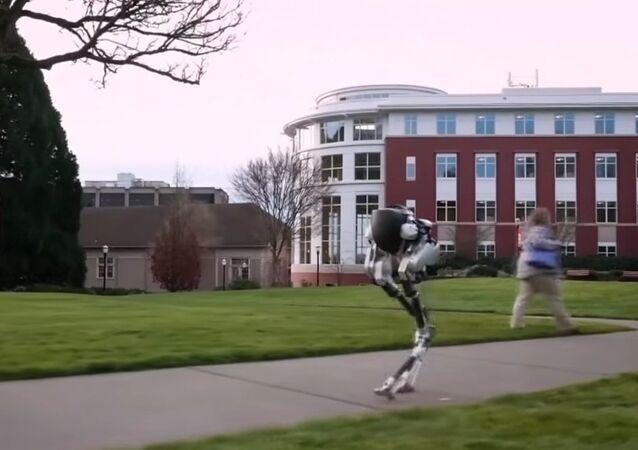 Cassie The Walking Robot