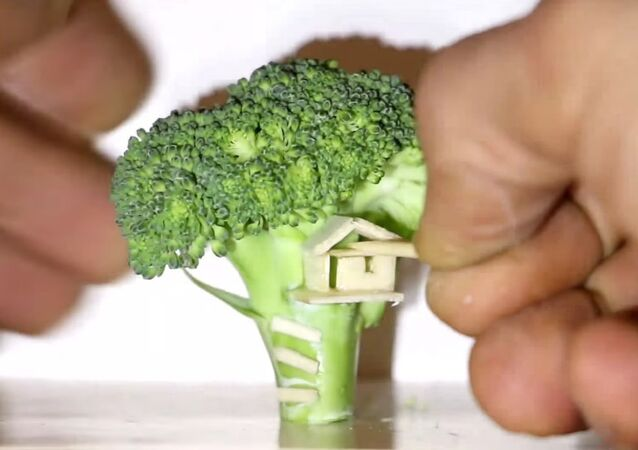 Miniature Tree House ... Hani Broccoli Tree is Not !?