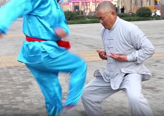 Iron Crotch Kung Fu