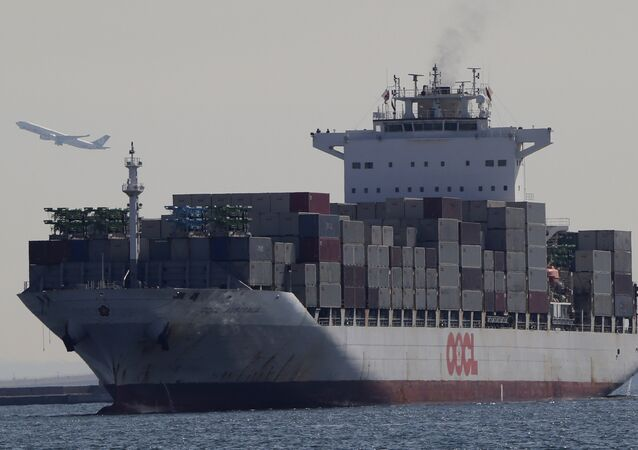 A container ship arrives at a port in Tokyo (File)