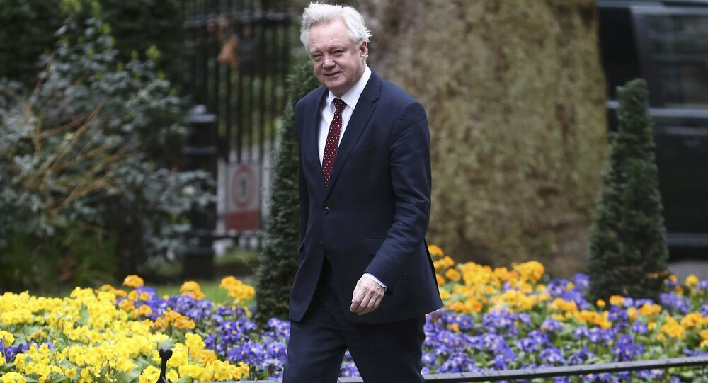 Britain's Secretary of State for departing the European Union David Davis arrives at 10 Downing Street for a cabinet meeting ahead of the budget in London, March 8, 2017.