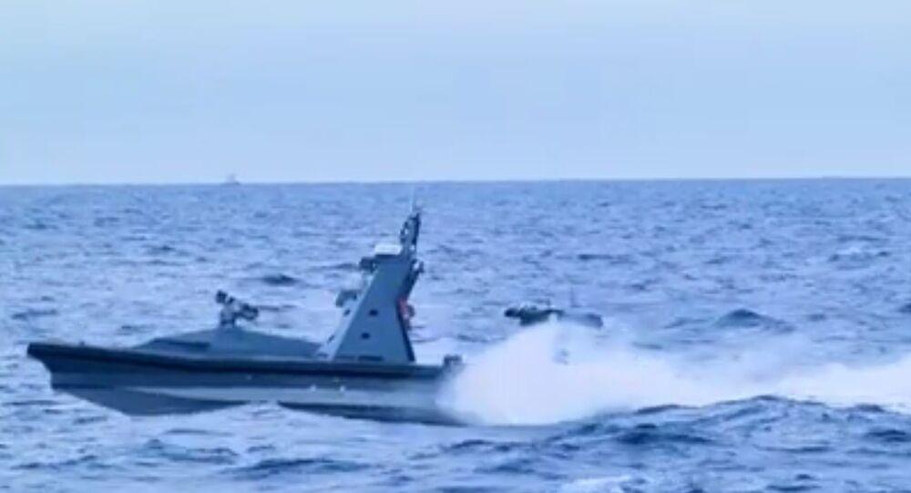 Protector at sea