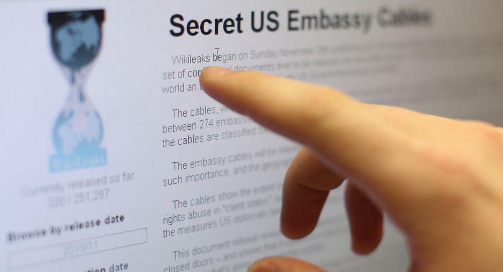 Internet users reading the international media project WikiLeaks. (File)