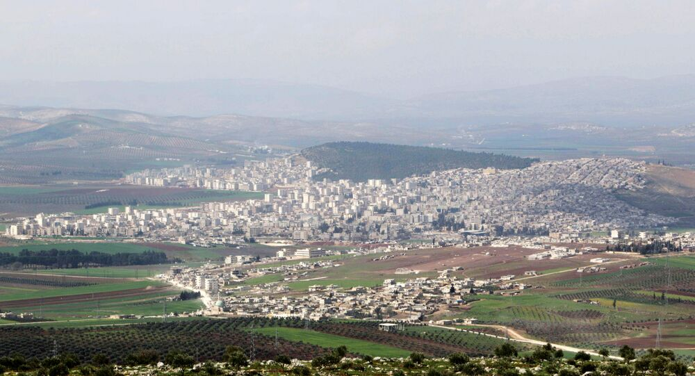 A general view shows the Kurdish-controlled city of Afrin, northern Syria. (File)
