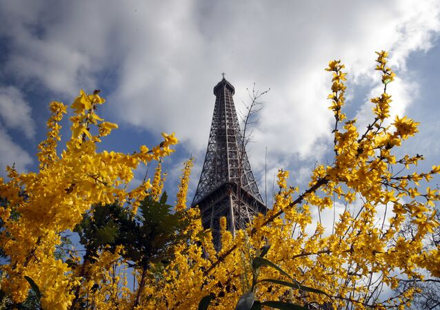 The Eiffel Tower rises from behind blossoming flowers and trees on a Spring day, in Paris, France
