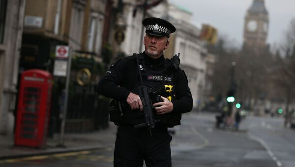 An armed police officer stands on Whitehall the morning after an attack by a man driving a car and weilding a knife left five people dead and dozens injured, in London, Britain, March 23, 2017. - Sputnik International