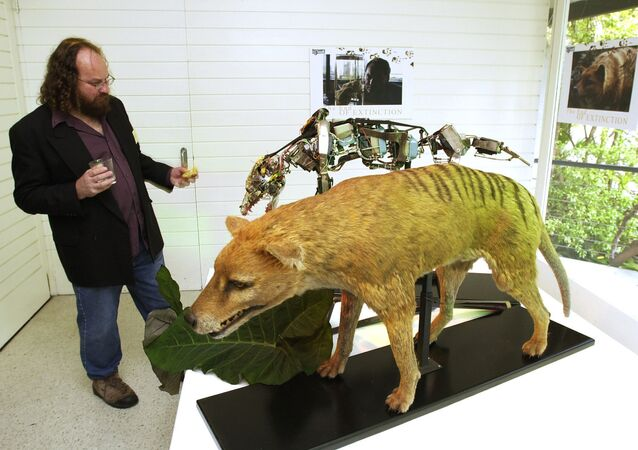 Bob Paddle, the author of The Last Tasmanian Tiger is seen in this Tuesday, May 28, 2002 photo in Sydney Australia.