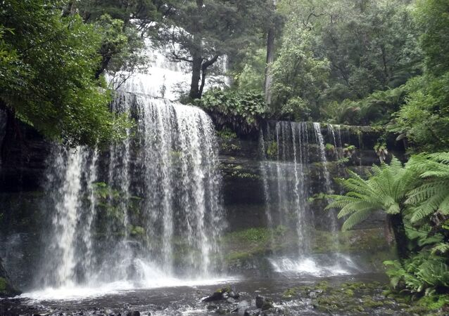 March 24, 2011 photo, Russell Falls in Mount Field National Park in Tasmania, Australia