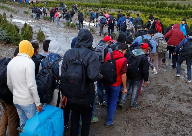 Migrants make their way after crossing the border at Zakany, Hungary October 16, 2015.