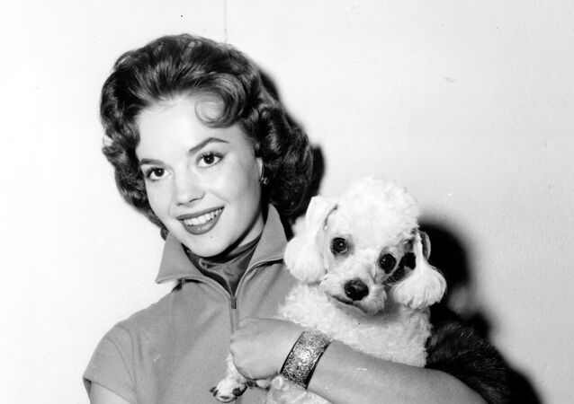 Actress Natalie Wood poses with her pet poodle Fifi at a Hollywood studio, Calif., on Oct. 28, 1955.