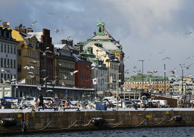 Seagulls fly over the snow-covered Gamla Stan dock in Stockholm