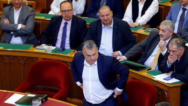 Hungarian Prime Minister Viktor Orban arrives to a vote on a bill tightening regulations on foreign universities operating in Hungary. - Sputnik International