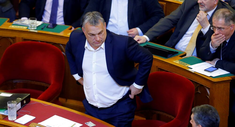 Hungarian Prime Minister Viktor Orban arrives to a vote on a bill tightening regulations on foreign universities operating in Hungary.